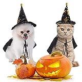 Disfraces de Halloween para gatos, disfraz de Halloween para mascotas, disfraz de bruja impreso, disfraz para gatos pequeños, Halloween, cosplay, fiesta, ropa para mascotas, decoración, L
