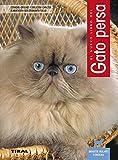 Gato Persa, Nuevo Libro Del
