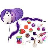 Legendog Juguetes para Gatos, 17Pcs Juguetes Gatos, Juguete Interactivo para Gatos con Plumas para Kitty (17 Pcs)