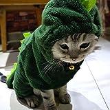 Teene Cat Clothing – Disfraz de Gato, diseño de Dinosaurio para Cachorros pequeños y Divertidos – 1 Unidad