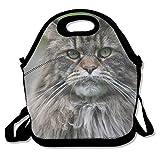 Bolsas de almuerzo grandes para mujeres, lindo gato persa Arte Bolsas de almuerzo Bolsas de almuerzo Bolsas de almuerzo Bolso Hombre Almuerzo 27.5x29x14.5cm