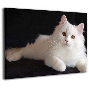 gatos en cuadros
