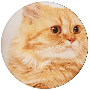 alfombra arena gato